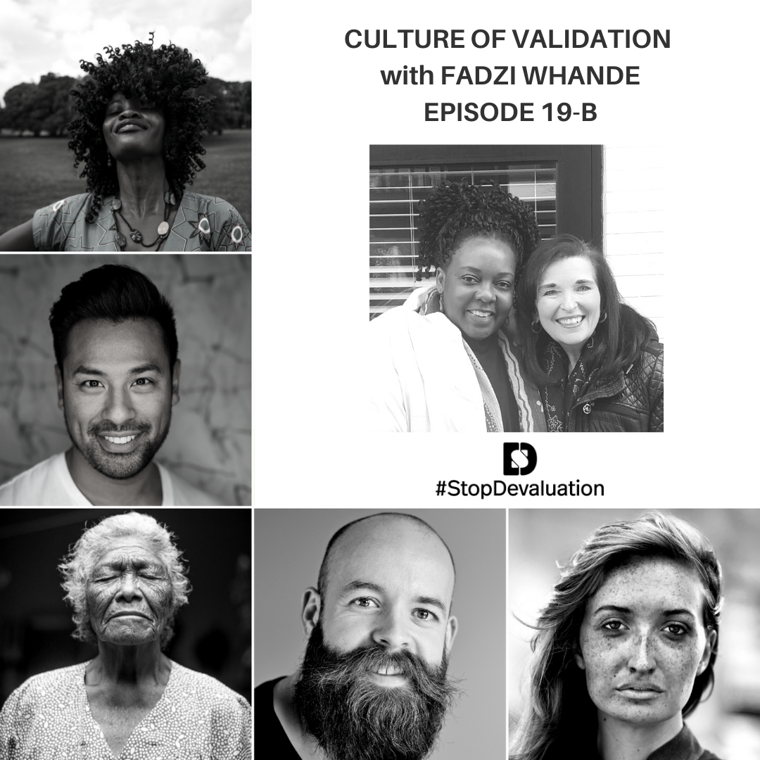 EP019-B Culture of Validation Interview with Fadzi Whande